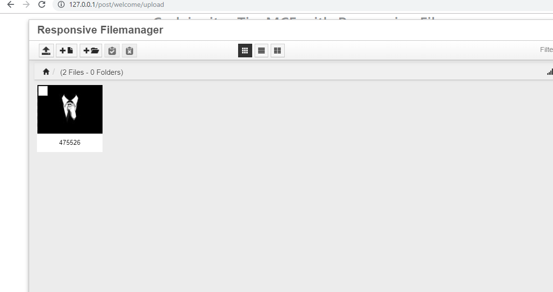 Codeigniter TinyMCE with Responsive Filemanager Solutions Touch
